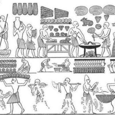 History of Biotech timeline