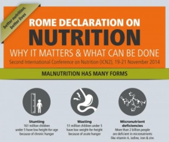 Durante la CIN2 (2ª Conferencia Internacional sobre Nutrición) se aprueban la Declaración de Roma sobre la Nutrición y el Marco de acción