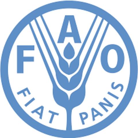 Primer periodo de sesiones de la Conferencia de la FAO, celebrado en Quebec, Canadá