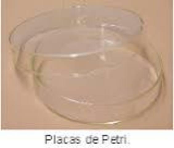 Richard Petri introduce el uso de la placas de Petri.