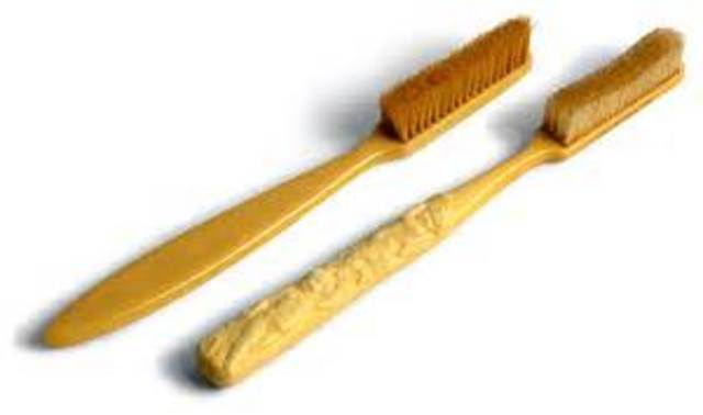 history of the toothbrush timeline timetoast timelines