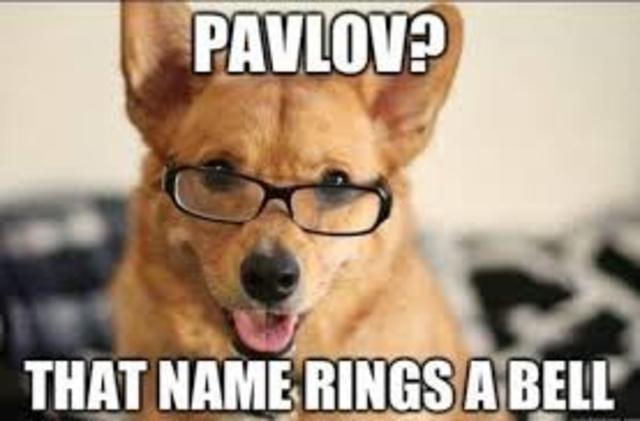 Schrodinger S Cat And Pavlov S Dog Joke
