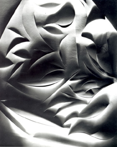 Francis Joseph Bruguiere: Cut Paper, 1928---the greatest abstraction is the greatest realism