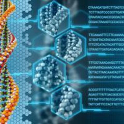PRUEBAS DE ADN Y MAPEO