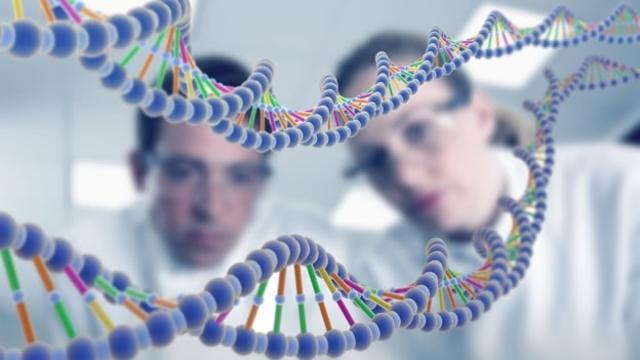 •Desarrollo de la genética y descubrimiento estructura del ADN