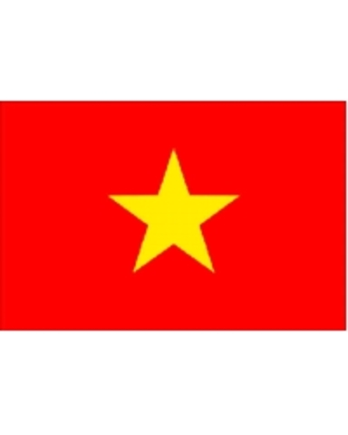 Vietnamese Army deals the final blow