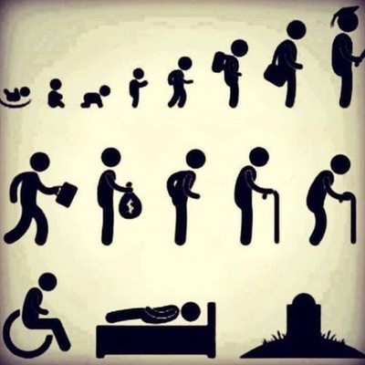 Ciclo vital del ser humano. timeline