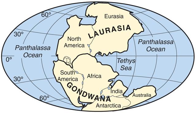 Alexander Du Toit - Existencia de dos Supercontinentes