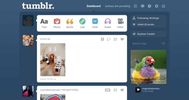 the development of tumblr