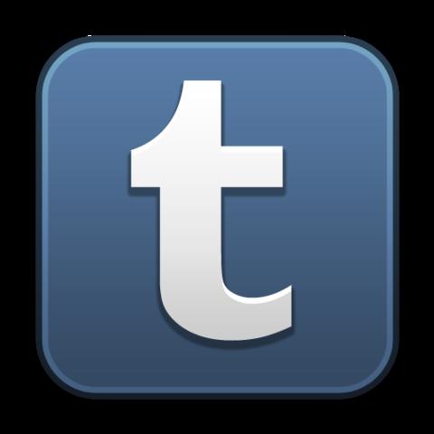 The tumblr app