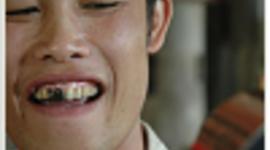 reAMP - Thai Doi timeline