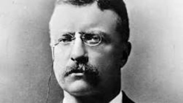 Teddy Roosevelt timeline | Timetoast timelines