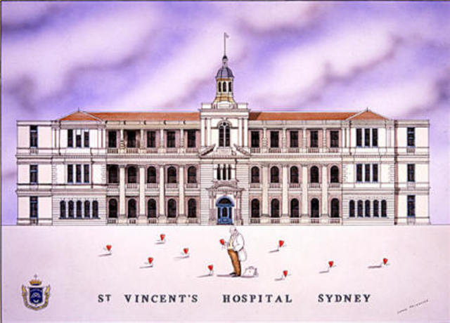First year resident medical officer at St Vinecent's Hospital