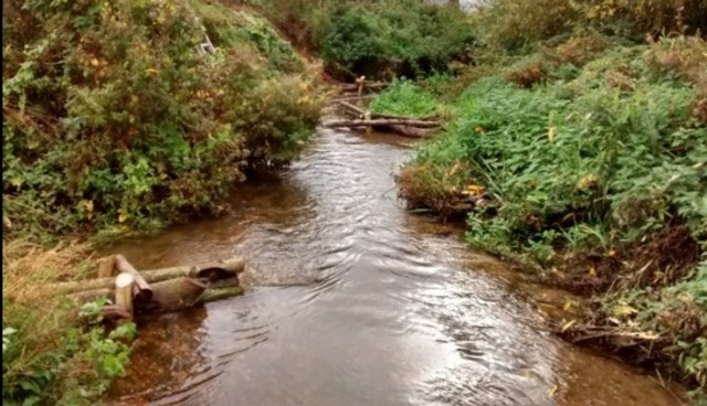 River Stour Improvements