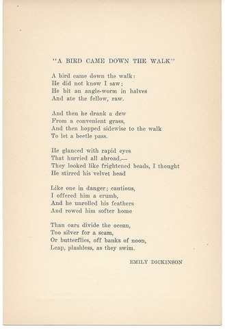 """A bird came down the Walk"""