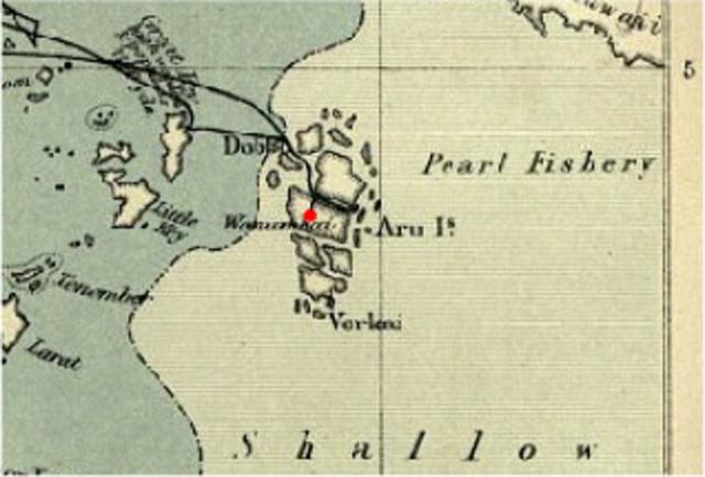 Interior of Aru Islands