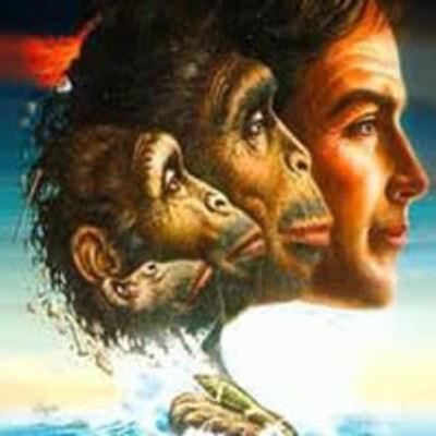 Cronología de las teorías de la evolución y sus personajes timeline