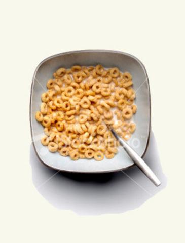 Salmonella, Malt-O-Meal