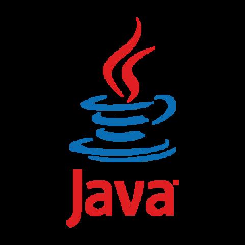 Surge el lenguaje de programacion JAVA