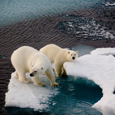 Globale klimaforhandlinger timeline