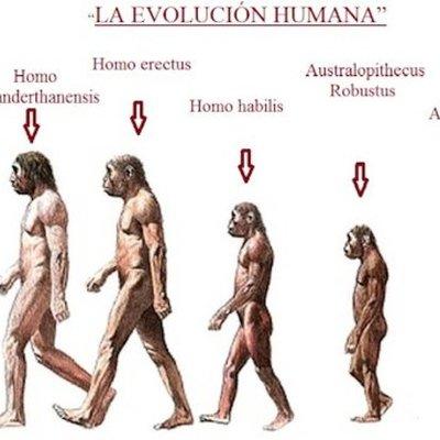 La evolución de la humanidad hasta ahora timeline