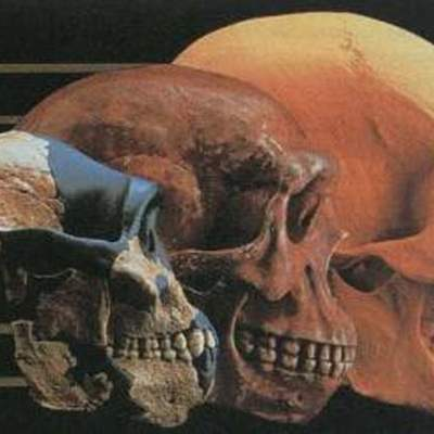 Teorías y personajes más destacados de la evolución timeline