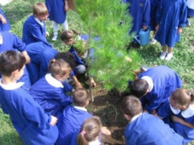 Ecología en escuelas