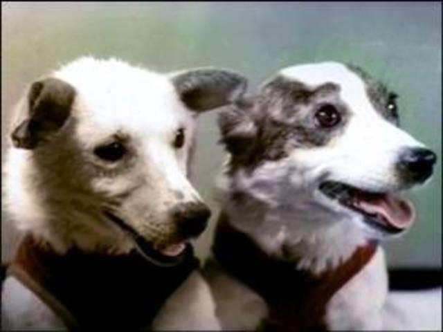 Первый орбитальный полёт в космос живых существ - собак Белки и Стрелки - с успешным возвращением на Землю