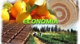 FUNDAMENTOS DE ECONOMIA  timeline