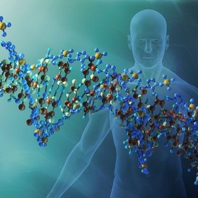 EL DESCUBRIMIENTO DEL DNA timeline