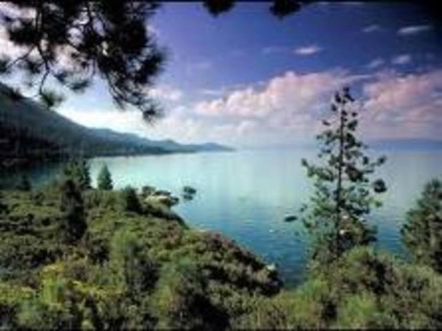 Unión Internacional para la Conservación de la Naturaleza y sus Recursos Naturales (UICN)