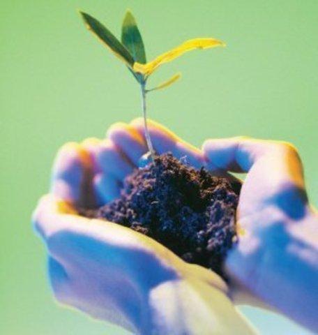 El término ecología fue inventado por el zoólogo alemán Ernst Haeckel en 1869