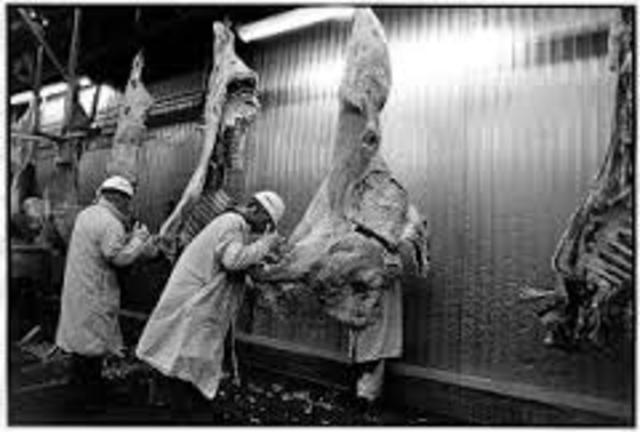 working conditions of the meat industry Workers in the food industry often work in harsh conditions with no healthcare and poor wages they also have the country's highest incidence of food insecurity.