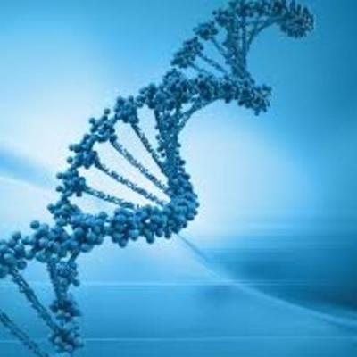 Historia de la biología molecular 11 a timeline