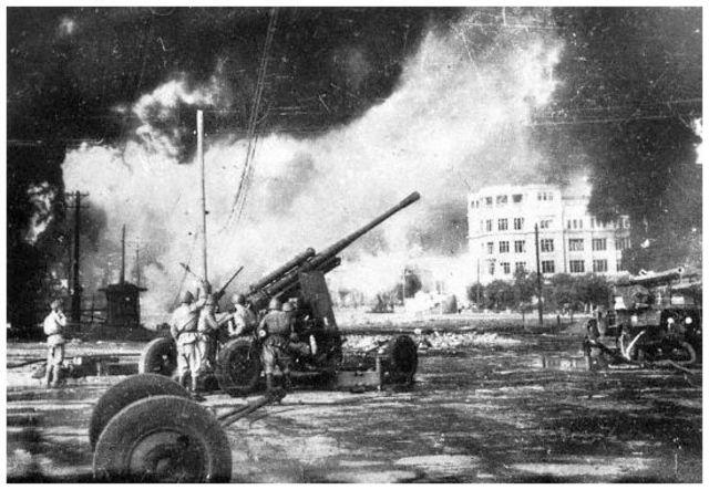 nature impact of world war 2 timeline | Timetoast timelines