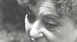 Judy (Weiszenberg) Cohen-The Story of a Holocaust Survivor timeline