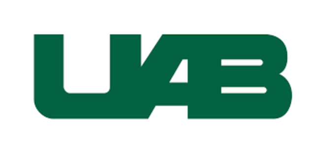 UAB Quality Assurance Officer