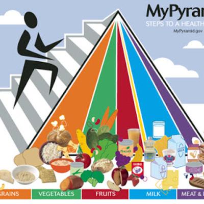 História da Nutrição timeline
