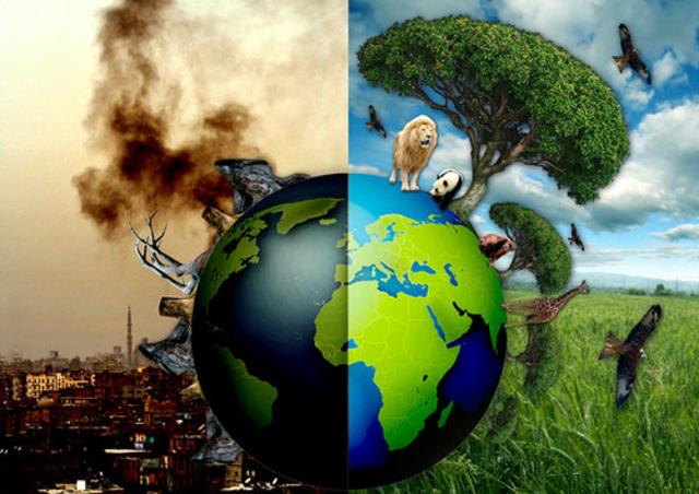 Ecología de hoy