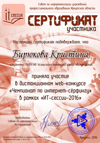 Чемпионат по интернет-сёрфингу 2016