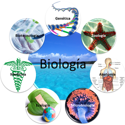 Historia de la biologia timeline