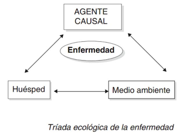 Siglo XX, Surge la tríada ecológica y historia natural.
