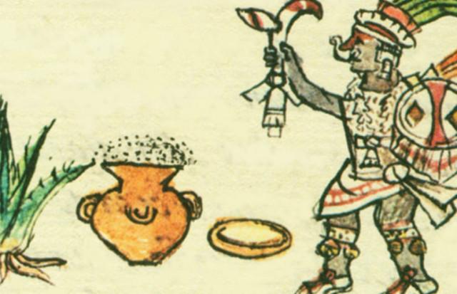 Fermentación: primera evidencia del vino y la cerveza.