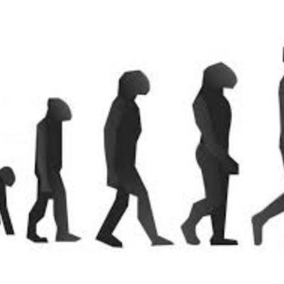 EVOLUCIÓN DE LA CALIDAD timeline