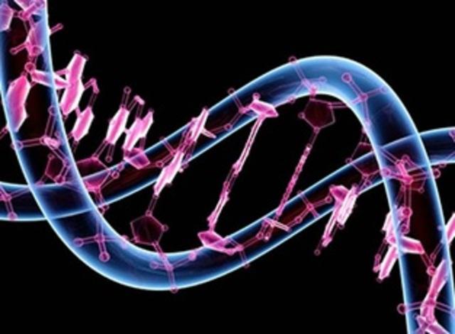 Anuncio del desciframiento del Genoma Humano.