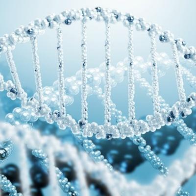 Linea de tiempo sobre la Historia de la Genetica  timeline