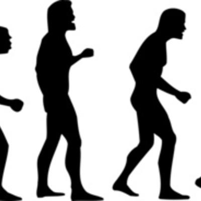 Evolución de las formas de procesamiento timeline