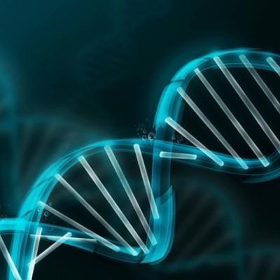 La Historia de la Genética timeline