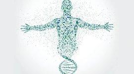 HISTORIA DE LA GENETICA timeline