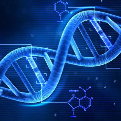 Linea de tiempo sobre la historia de la genética timeline